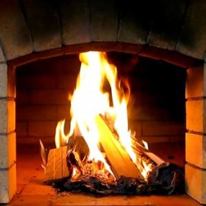 Виды древесины для сжигания в камине.